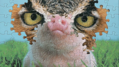 Photo of Vintage Jigsaw Puzzles Blended Piece-by-Piece into Surreal Montages by Tim Klein