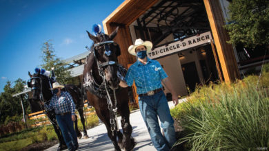 Photo of Celebrating the New Tri-Circle-D Ranch, Home to Heritage and Happy Horses