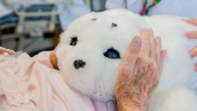 Photo of There's No Cure for Covid-19 Loneliness, but Robots Can Help