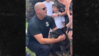 Photo of Cops Bid Farewell To Highway Patrol K-9 Diagnosed With Terminal Cancer