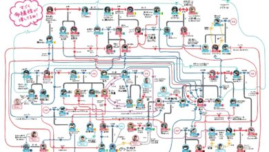 Photo of Penguin Relationship Flowchart Shows Intricate Romantic Web