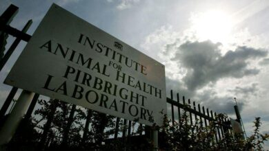 Photo of Fact check: Pirbright Institute does not have patent for a COVID-19 vaccine