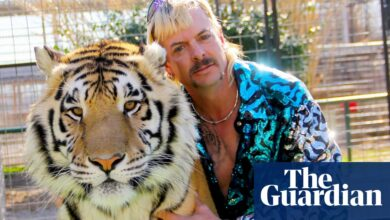 Photo of Tiger King zoo closes suddenly after license suspended