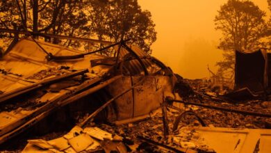 Photo of The Wildfire Catastrophe Was Premeditated