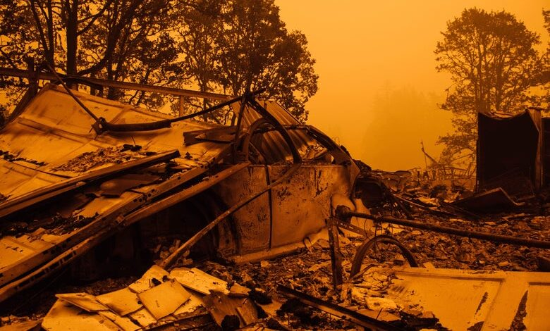 The Wildfire Catastrophe Was Premeditated