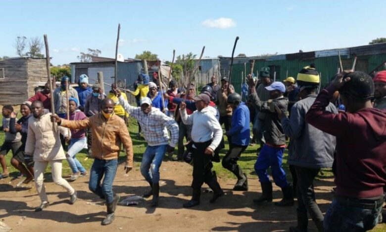 News24.com | 'They stabbed and stoned my horses'