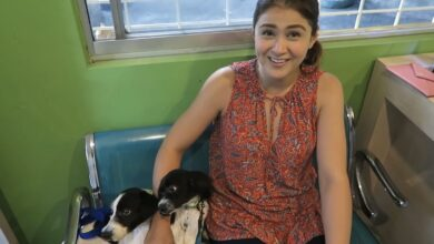 Photo of Carla Abellana bats for responsible pet care: 'A pet is a commitment'